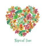 水彩花卉例证 水彩热带异乎寻常的被隔绝的例证 爱心脏花框架 木槿 皇族释放例证