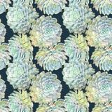 水彩花卉手拉的五颜六色的明亮的无缝的样式 皇族释放例证