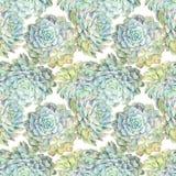 水彩花卉手拉的五颜六色的明亮的无缝的样式 向量例证