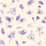 水彩花卉无缝的样式 库存照片