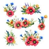 水彩花卉构成 与夏天花的手拉的例证 与野花的花束 鸦片 图库摄影