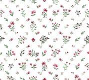 水彩花卉装饰样式 库存照片