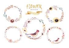 水彩花卉boho花花圈 水彩自然框架:叶子、羽毛和鸟 背景查出的白色 向量例证