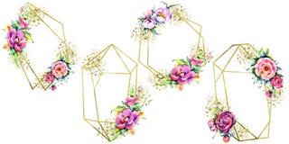 水彩花束桃红色牡丹flowes 花卉植物的花 框架边界装饰品正方形 向量例证