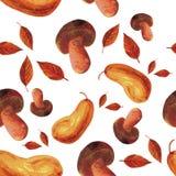 水彩被绘的秋天无缝的样式 皇族释放例证