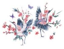水彩起重机和樱桃开花的分支  皇族释放例证