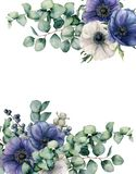 水彩银莲花属和玉树花卉卡片 手画蓝色和白花,在白色隔绝的玉树叶子 免版税库存照片