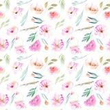 水彩领域康乃馨、玫瑰和小领域绿化分支无缝的样式 免版税库存图片
