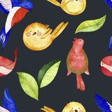 水彩鸟无缝的样式 库存例证