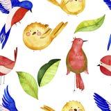 水彩鸟无缝的样式 皇族释放例证