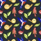水彩鸟无缝的样式 库存图片