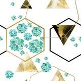 水彩echeveria多汁植物和金黄和黑六角形和三角几何最低纲领派现代无缝 库存照片