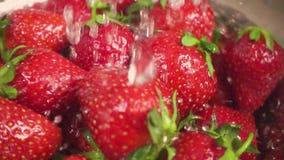 水慢动作滴在滤锅的一个草莓落 股票视频
