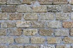 水成岩墙壁,篱芭,外部,纹理 用途广泛在房子或篱芭,乌克兰修造墙壁的沿海地方  图库摄影
