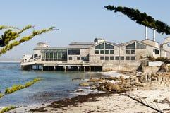 水族馆海湾蒙特里 库存图片