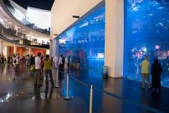水族馆迪拜购物中心 免版税库存照片