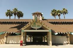 水族馆野生生物世界动物园 免版税库存照片