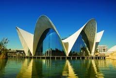 水族馆oceanografic巴伦西亚 库存照片
