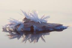 水晶冰奇迹 免版税图库摄影