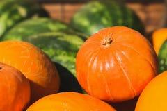 水果和蔬菜南瓜瓜西瓜 免版税库存照片