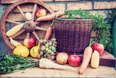 水果和蔬菜在秋天,红色过滤器静物画  免版税库存图片