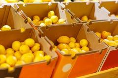 水果市场用各种各样的五颜六色的新鲜的水果和蔬菜 在倾吐的餐馆沙拉的主厨概念食物新鲜的厨房油橄榄 库存图片