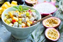 水果沙拉用在碗的异乎寻常的热带水果 库存照片