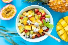 水果沙拉用在蓝色背景的热带和异乎寻常的果子 库存照片