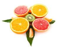 水果的指南针 库存图片