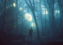 水母在一个黑暗的森林里 免版税库存图片