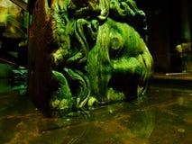 水母在大教堂储水池,伊斯坦布尔,土耳其haed 免版税库存照片