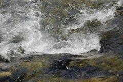 水比赛 免版税库存照片