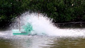 水水力透平允许污水入净水 股票录像