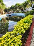 水池和美好的地方 免版税图库摄影