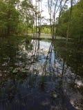 水池of_reflection 库存图片