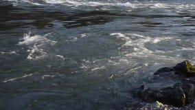 水河小河流动的自然 股票视频