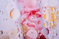 水油泡影宏观抽象背景流程液体红色橙黄色照片  免版税库存照片
