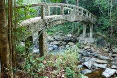 水泥桥梁在森林里 库存照片