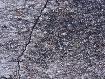 水泥高明的墙壁 图库摄影