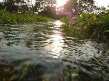 水流失,小的河, 库存照片
