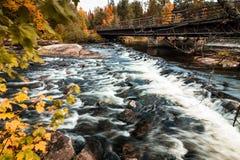 水流量在精采秋叶围拢的桥梁下 库存照片