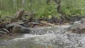 水流量通过非常光滑的岩石 迅速山河在秋天 Colorfull木头背景 深山河 股票视频