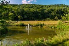 水浪花从喷泉的创造湖的表面上的波纹在绿色草本中的 库存图片