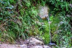 在山的水源 库存照片