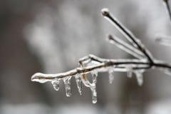 水滴冰 免版税库存照片