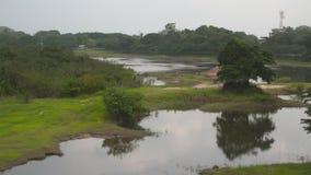 水灾地区和沼泽 影视素材