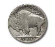 水牛城在白色查出的五分硬币 库存照片