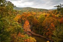 水牛城河在秋天 库存图片