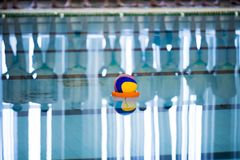 水球是队水上运动 库存图片