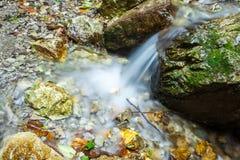 水的小水源在岩石的 免版税库存照片